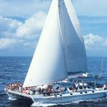 Best Offer Today! Aristocat The Luxury Sailing Catamaran By Bali Hai Cruises
