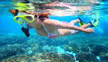 Special Offer For Lombok Tour, Gili Nanggu Snorkeling Trip One Day Tour