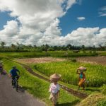 Hot Deal! Rice Field and Village Exploration Gentlewalk Package By Bali Eco Cycling