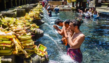 Get Special Offer! Best of Ubud Tour: Nature, Culture, Heritage and Temples