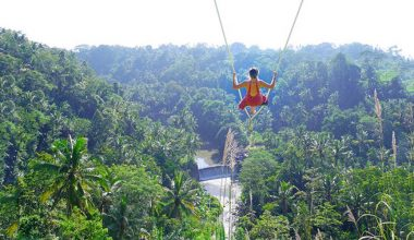 Enjoy Our Special Offer: Best of Ubud Tour with Jungle Swing