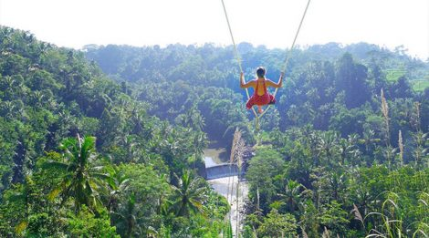 Enjoy Our Special Discount for Bali Swing Packages in Ubud