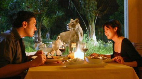 Get Your Special Breakfast with Lions at Bali Safari & Marine Park, Enjoy The Foods and Watching The Animals