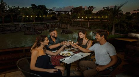 Enjoy Your Special Dinner With Animals And Book Night At The Zoo Package at Bali Zoo, Get Special Deal Today!