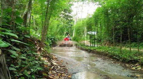 Enjoy Our Special Deals For ATV Ride in Ubud By Bali Skutis Adventures