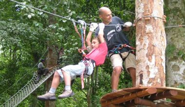 Special Discount Today! Book Now For Bali Treetop Adventure Package in Bedugul Botanical Garden, Tabanan