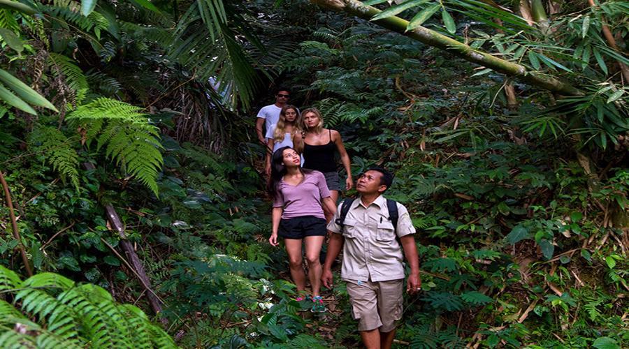Trekking Adventures By Mason Adventures Bali