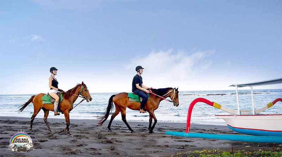 Get Our Special Offer For Short Riding Experience Package at Bali Horse Riding by True Bali Experience