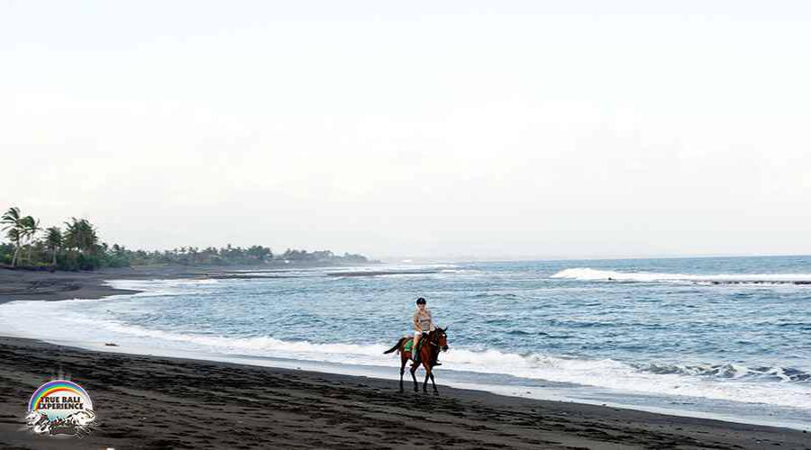 Get Special Discount For Sun Rise Experience at Bali Horse Riding by True Bali Experience