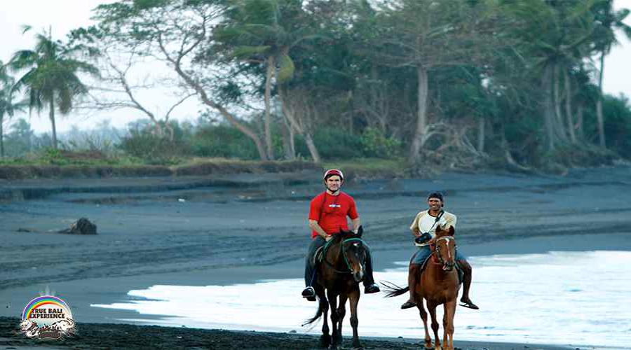 Special Package For Sun Salutation Ride at Bali Horse Riding by True Bali Experience