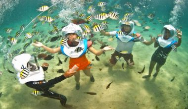 Enjoy Our Special Offer For Aquanauts + Bali Hai Aristocat Cruise in Lembongan Island