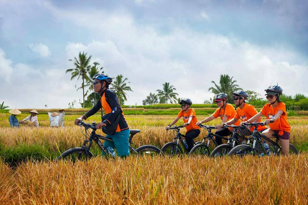 Bali Adventures Cycling By Bali Toekad Adventures