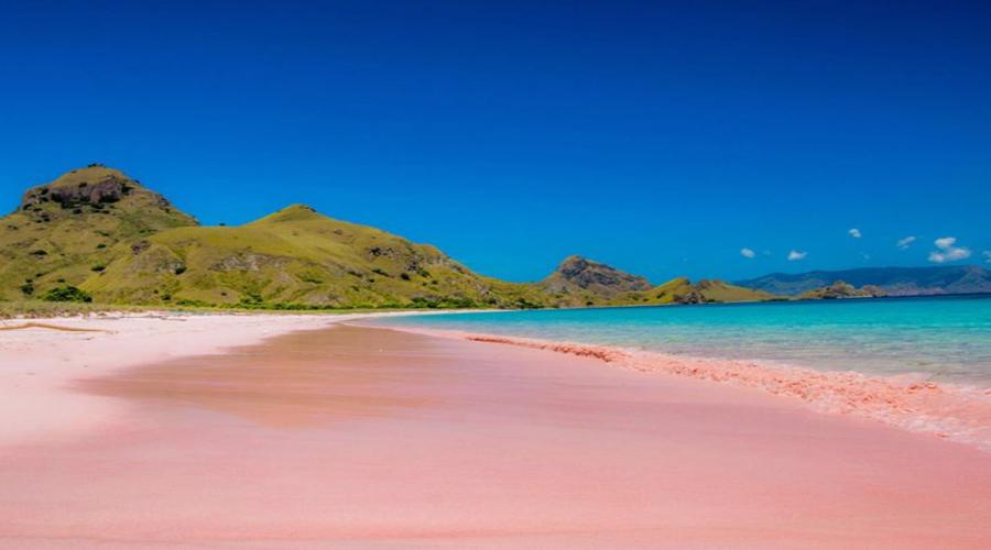 Get Our Special Offer For Lombok Tour, Pink Beach One Day Tour With Snorkeling