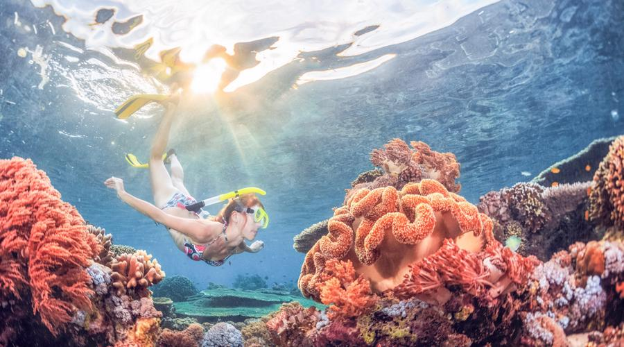 Book Our Special Offer! Bali Blue Lagoon Snorkeling Experience