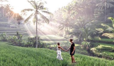Bali Special Tour Packages By Enjoy Kuta
