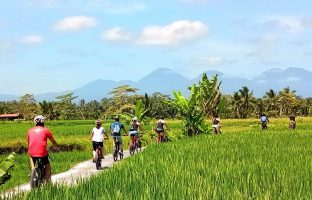 EBikes Bali - Electric Bicycle Tour