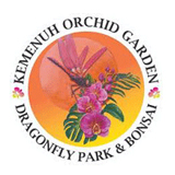 Kemenuh Orchid Garden, Insect Home & Bonsai Garden Bali